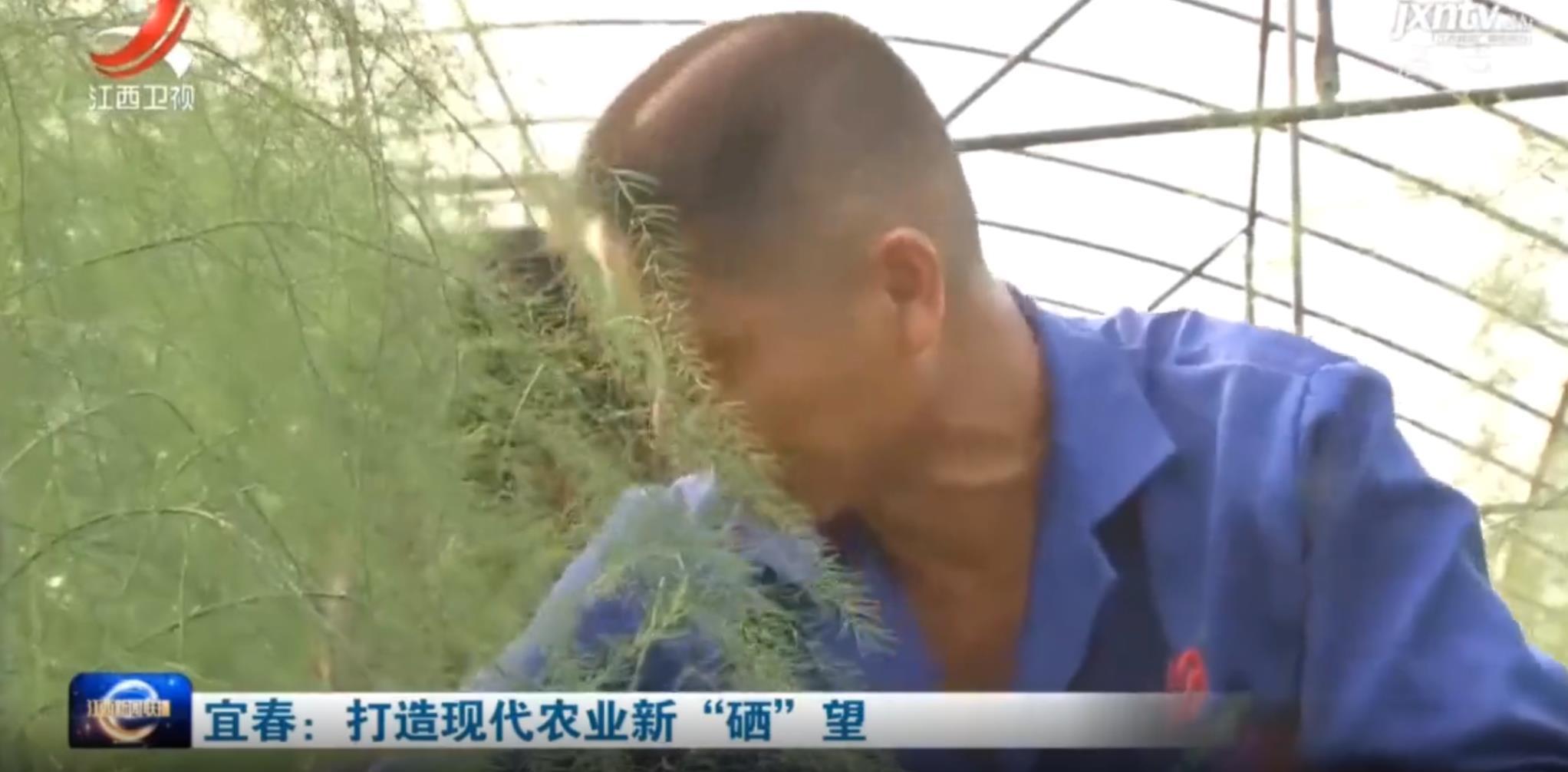 """宜春:打造现代农业新""""硒""""望"""